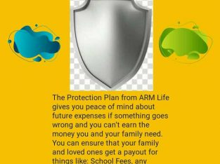 Protection Insurance plan