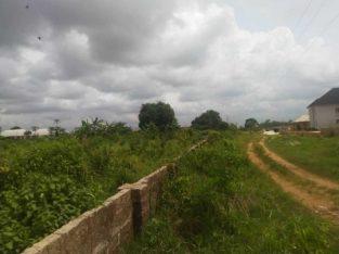Land for sale at Okha community sapele road Benin City